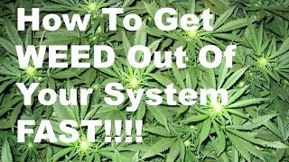 How To Get Weed Out Your System Fast Naturally